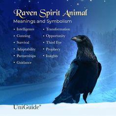 Raven Spirit Animal, Animal Spirit Guides, Animal Meanings, Animal Symbolism, Raven Totem, Crow Totem, Meaning Of Raven, Libra, Raven And Wolf