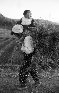 肩車で家路につく母子。家族総出の農作業では、母親が子育てだけに専念することはできない。1956年(昭和31年)5月頃。