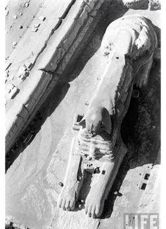 Ancient Egypt before they...نقطنا ببعادك     ╬¢©®°±´µ¶ą͏Ͷ·Ωμψϕ϶ϽϾШЯлпы҂֎֏ׁ؏ـ٠١٭ڪ۞۟ۨ۩तभमािૐღᴥᵜḠṨṮ'†•‰‴‼‽⁂⁞₡₣₤₧₩₪€₱₲₵₶ℂ℅ℌℓ№℗℘ℛℝ™ॐΩ℧℮ℰℲ⅍ⅎ⅓⅔⅛⅜⅝⅞ↄ⇄⇅⇆⇇⇈⇊⇋⇌⇎⇕⇖⇗⇘⇙⇚⇛⇜∂∆∈∉∋∌∏∐∑√∛∜∞∟∠∡∢∣∤∥∦∧∩∫∬∭≡≸≹⊕⊱⋑⋒⋓⋔⋕⋖⋗⋘⋙⋚⋛⋜⋝⋞⋢⋣⋤⋥⌠␀␁␂␌┉┋□▩▭▰▱◈◉○◌◍◎●◐◑◒◓◔◕◖◗◘◙◚◛◢◣◤◥◧◨◩◪◫◬◭◮☺☻☼♀♂♣♥♦♪♫♯ⱥfiflﬓﭪﭺﮍﮤﮫﮬﮭ﮹﮻ﯹﰉﰎﰒﰲﰿﱀﱁﱂﱃﱄﱎﱏﱘﱙﱞﱟﱠﱪﱭﱮﱯﱰﱳﱴﱵﲏﲑﲔﲜﲝﲞﲟﲠﲡﲢﲣﲤﲥﴰ﴾﴿ﷲﷴﷺﷻ﷼﷽ﺉ ﻃﻅ ﻵ!\