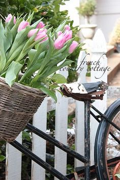 Vintage Bicycle Planter for Spring