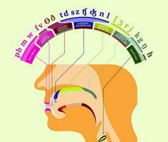 примеры фонетической зарядки по английскому языку
