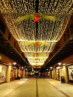 Stunning commercial #Christmas string light #canopy