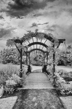 Thanksgiving Point Gardens, BW, Infrared by Dawn Wheeler, via Behance