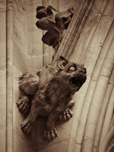 gargoyles prague castle....... I don't remember seeing this one in particular, but I saw a similar one, more stretched out.