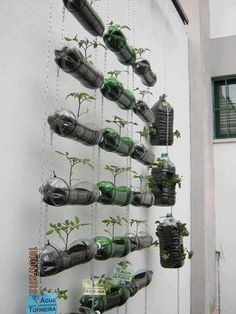 """Se admiten Botella jardín vertical, cadenas y cables ... no sigue el """"cómo"""", pero viendo la foto podemos reproducir la idea.  De esta manera podemos elaborar un pequeño jardín o jardín con plantas variadas."""