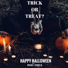 Trick Or Treat? http://www.miniowls.com/1/post/2016/09/15-ideas-for-a-fun-and-spooky-halloween-costume-with-a-twist.html #love #halloween2016 #miniowls #halloweencostume #halloween #trickortreat #happyhalloween #spookyhalloween