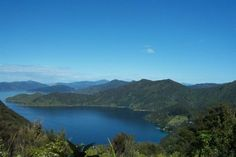 Queen Charlotte Track, Marlborough Sounds. South Island, New Zealand. #travel #photography