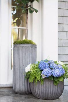 Gardening Front Door Six Tips For Creating A Dramatic Front Door Container Garden - Pottery Barn Front Door Plants, Front Porch Planters, Front Yard Decor, Outdoor Planters, Concrete Planters, Front Porch Flowers, Porch Plants, Fall Planters, Front Porches