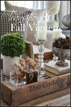 5 Eager Cool Ideas: Transitional Living Room Neutral transitional house tips. Coffee Table Vignettes, Fall Vignettes, Coffee Table Styling, Decorating Coffee Tables, Coffee Table Centerpieces, Autumn Centerpieces, Tray Styling, Centrepieces, Transitional Coffee Tables