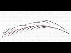 Deluxe Brows® Microblading Eyebrows Rainbow Pattern - Training / Tutorial - YouTube