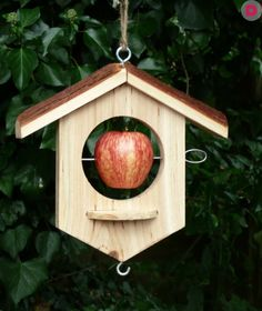 Encourage birds to your garden with our bird feeders, nesters and bird baths. Pretty bird feeders and baths which will give hours of pleasure. Suet Bird Feeder, Bird Feeder Plans, Bird House Feeder, Hanging Bird Feeders, Homemade Bird Houses, Homemade Bird Feeders, Wooden Bird Houses, Bird Houses Diy, Bird Tables