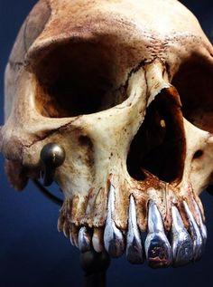 Real human skull with implanted metal teeth - Photo credit: Brian Kubasco @museumoddities