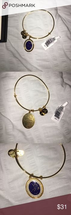 NWT Stagittarius Alex & Ani bracelet NWT Stagittarius Alex & Ani bracelet! Bought but then realize it was the wrong month!!! Includes all seen in the pic ☀️ Smoke free & Pet free home, bundle to save more!! Comment any questions 🌻💙 Alex & Ani Jewelry Bracelets