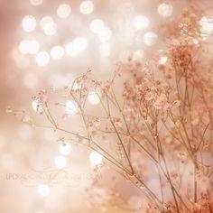 Fall #Pink Blush