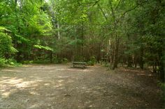 Sibbald Point Provincial Park, East Campground, Camping in Ontario Parks Ontario Parks, Country Roads, Canada, Camping, Summer, Campsite, Summer Time, Campers, Verano