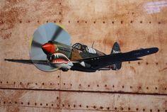Plaque métal déco avion Curtis sur Retro Wheels : https://www.retrowheels.fr/plaques-metalliques/373-plaque-metal-avion-curtis.html
