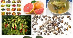 Liste de 12 aliments indispensable pour perdre le poids: Soupes,Fromage cottage,Les avocats,Vinaigre de cidre,Les noix,Certains grains entiers, Poivre de piment,Les Fruits,Le Pamplemousse,Graines de Chia, L'huile de coco,Yaourt plein de graisse.