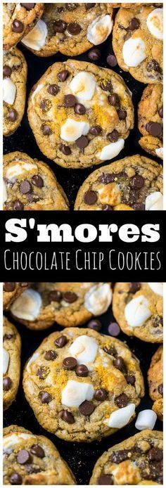 S'mores Chocolate Chip Cookies are thick, chewy, and loaded with so much gooey goodness! S'mores Chocolate Chip Cookies are thick, chewy, and loaded with so much gooey goodness. Easy to make and no chilling required! Just Desserts, Delicious Desserts, Dessert Recipes, Yummy Food, Good Cookie Recipes, Good Recipes, Snack Recipes, Camping Desserts, Cookie Flavors