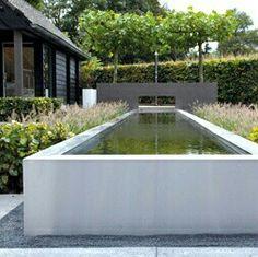 Raised pool. Pinned to Pool Design by BASK Pool Design.