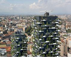 Building Covered In GreenTrees #NoStoryNoBusiness They tell a #story http://www.amazon.com/gp/product/B013EDNSN0