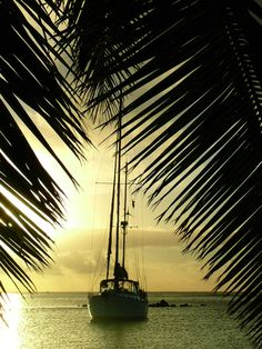 Sail at sunset in the Cook Islands