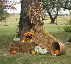 Image result for fall display idea mums pumpkins straw