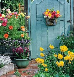 Colorful garden space