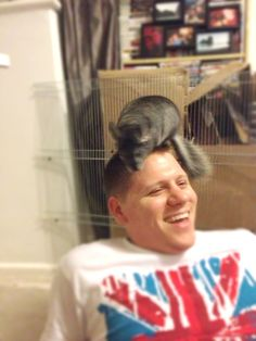 Playing on daddy's head