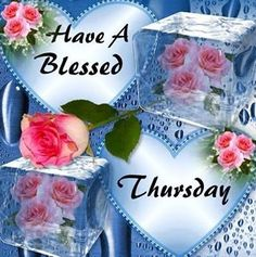 Have A Blessed Thursday Good Morning good morning thursday thursday quotes good morning quotes happy thursday thursday quote good morning thursday thursday blessings happy thursday quote thursday blessings quotes Good Morning Thursday Images, Good Morning Happy Thursday, Happy Thursday Quotes, Good Morning Images Download, Good Morning Picture, Good Morning Greetings, Good Morning Wishes, Thursday Gif, Thursday Pictures