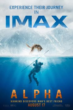 The movie Alpha: trailer, clips, photos, soundtrack, news and much more! Action Movies, Hd Movies, Movies To Watch, Movies Online, Drama Movies, Movie Tv, New Movie Posters, New Poster, Film Posters
