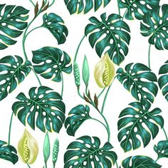 Patterns with monstera leaves.  by @Graphicsauthor