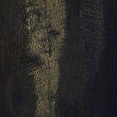 997EP-elora pine