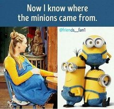 15 Minion Jokes Funny- Life Humor and Hilarious memes Friends Tv Show, Tv: Friends, Serie Friends, Friends Cast, Friends Episodes, Friends Moments, Friends Forever, Minion Humour, Funny Minion Memes