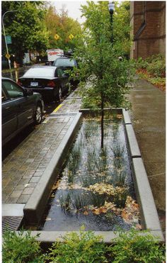 Benefits Of Landscape Architecture collecting stormwater and putting it back into the groundcollecting stormwater and putting it back into the ground Urban Landscape, Landscape Design, Garden Design, Rain Garden, Water Garden, Green Architecture, Landscape Architecture, Water Collection, Green Street