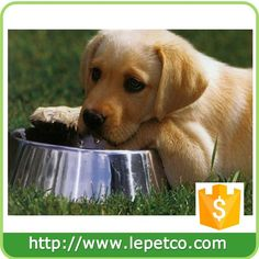 For Amazon and eBay stores Wholesale low price rubber bottom stainless steel pet bowl