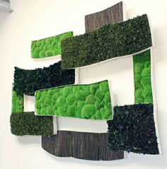 Custom Made Decorative Pictures of Preserved Moss, Foliages and Reeds