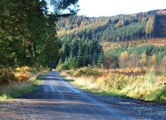 The Raider's Road Forest Drive is a fantastic detour through the Galloway Forest Park, with beautiful views - Dumfries and Galloway Forest Park, Country Roads, Beautiful