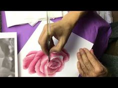 (19) Another Rose time lapsed - YouTube