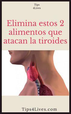 la glándula tiroides puede conducir a la disfunción eréctil