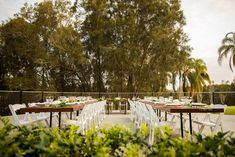The Mercure Resort Gold Coast deck styled by W Events Group highlights the green back drop of Palm Meadows Golf Course. Photography by Jadore Wedding Films. Wedding Film, Receptions, Gold Coast, Golf Courses, Backdrops, Highlights, Palm, Deck, Tropical