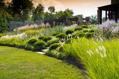 ornamental grasses home exterior - Bing images Modern Landscaping, Front Yard Landscaping, Landscaping Ideas, Garden Landscape Design, Landscape Architecture, Back Gardens, Outdoor Gardens, Sloped Garden, Modern Pools