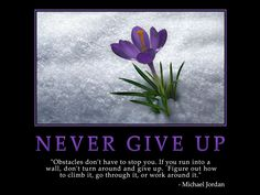 picture and encouragement excerise   Never Give Up Wallpaper MLM Motivational Download MLM Training India ...