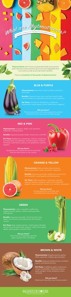 What Role Does Phytonutrients Play In Your Fruits & Vegetables? Big Words, Fruits And Vegetables, Immune System, Red And Pink, Stuffed Mushrooms, Nutrition, Pure Products, Eat, Healthy