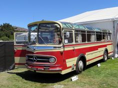 Mercedes-Benz Bus More