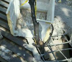 Alcantarilla peligrosa en puente de la avenida Mateo de Regil cerca de la prepratoria 9 en la colonia Agrícola en el municipio de Guadalajara. Reportero Ciudadano: Rafael Arceo