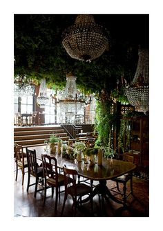 hanging vine and forest floor ceiling