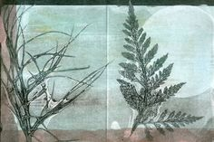 "blank note card set of 4, original botanical monoprint  ooak ""one of a kind"" gelatin mono-printed notes card sets.    I use pressed plants from my"