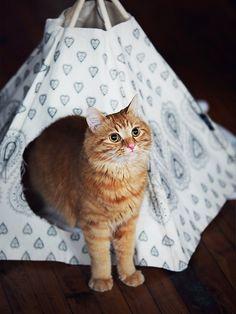 Free People Printed Cat Tipi, $88.00