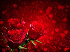 Red Roses and Hearts Background​ | Gallery Yopriceville - High-Quality Images and Transparent PNG Free Clipart