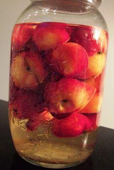 Paradis æble snaps - lige til julebordet! Beer Brewing, Home Brewing, Smoothie, Cider Cocktails, Vodka, Good Food, Yummy Food, Danish Food, Spiritus